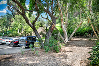 real-estate-photography-long-seal-huntington-newport-beach-los-angeles-pasadena-glendale-burbank- Griffith Park Blvd-Silverlake-90039-photographer-21